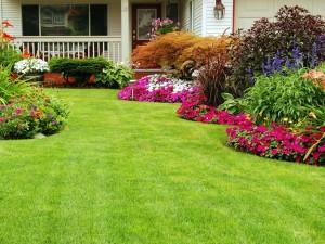 Εντυπωσιακός κήπος με ελάχιστη προσπάθεια!